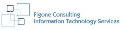 Figone Consulting Information Technology Services